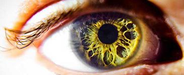 Какими глазами мы смотрим на Мир – такими Он смотрит в Нас!